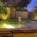 bassin-amenagement-chlorophylle