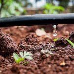 irrigation-eau-arrosage-95